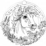 Dibujos de mandalas de animales para pintar