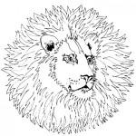 Pintando dibujos de mandalas de animales