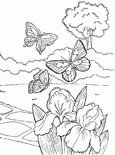 Paisajes naturales para imprimir y pintar | Colorear imágenes