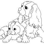 Dibujos de mascotas para imprimir y colorear