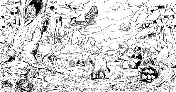 Biomas Biodiversidad Dibujos Simples Para Colorear Www Imagenesmy Com