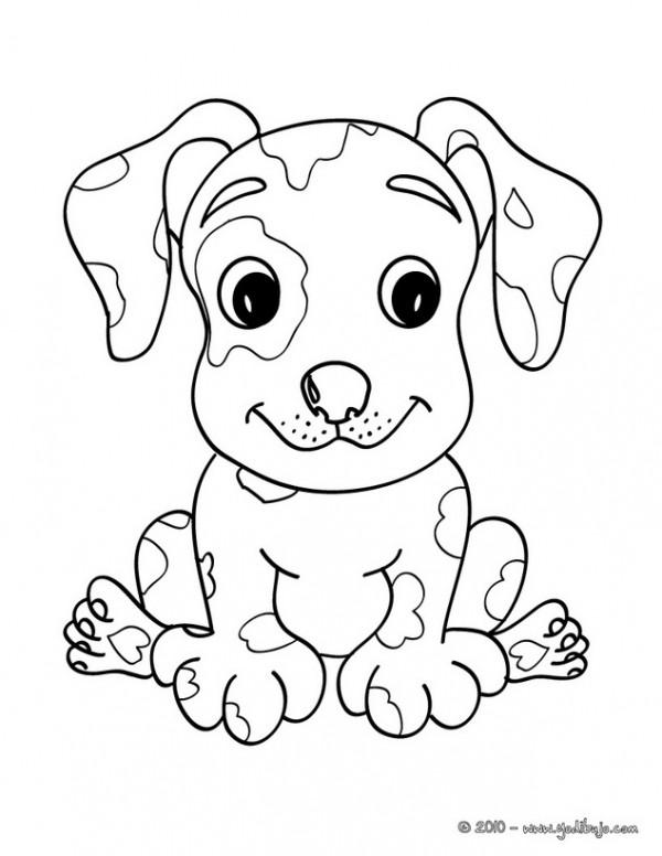chien-2-01-8u3_fua