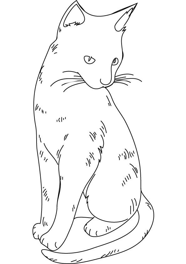 Draw So Cute Kleurplaten Dibujos De Gatitos Simp 225 Ticos Para Colorear Colorear