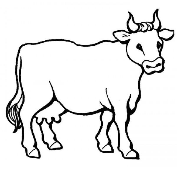 vaca_descargar