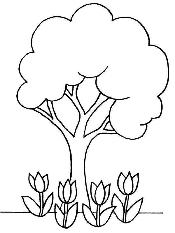 arbol-flores-2