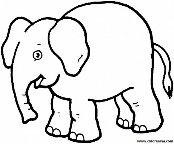 elefante.png2