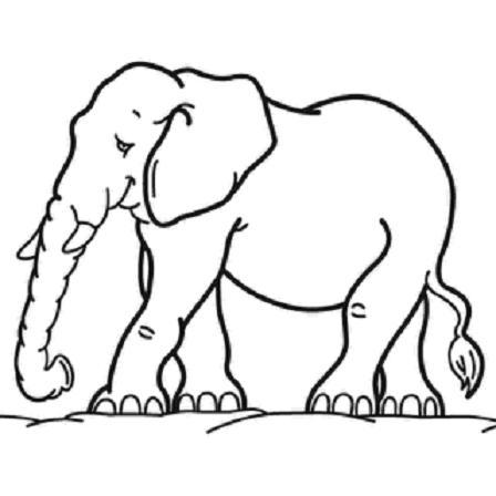 elefante_descargar