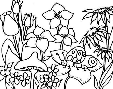paisajes-primavera-para-colorear