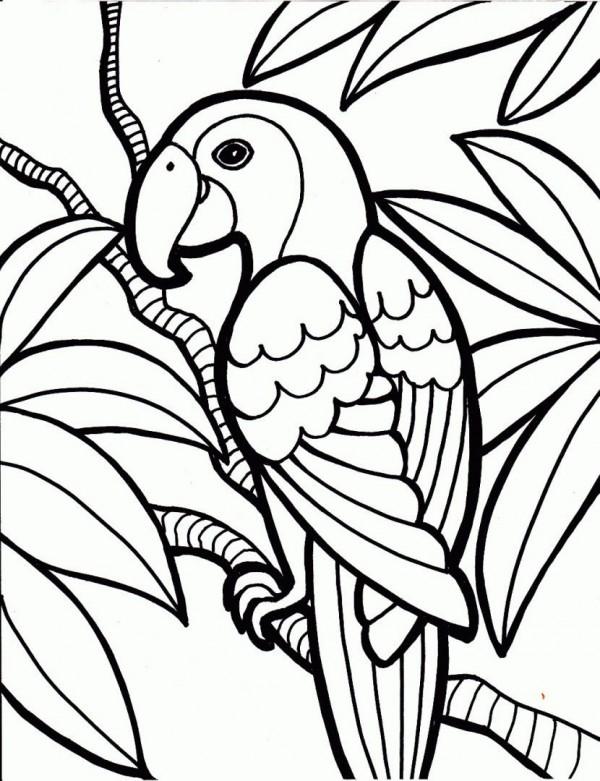 Aves-para-colorear-y-descargar