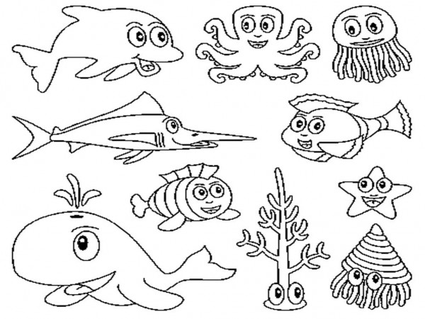 Dibujos De Animales Marinos Para Pintar Colorear Imágenes