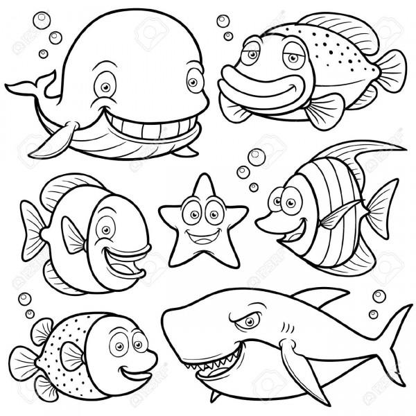 Dibujos de animales marinos para pintar | Colorear imágenes