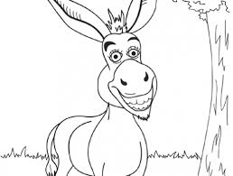burro.jpg1