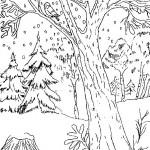 Imagenes para pintar de paisajes con nieve