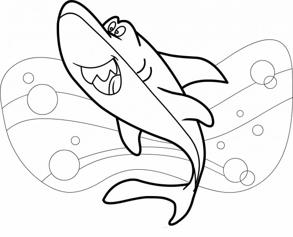 tiburones4