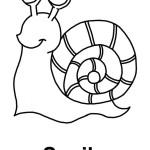 Imágenes de caracoles para pintar