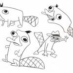 Imágenes para pintar de Perry el Ornitorrinco