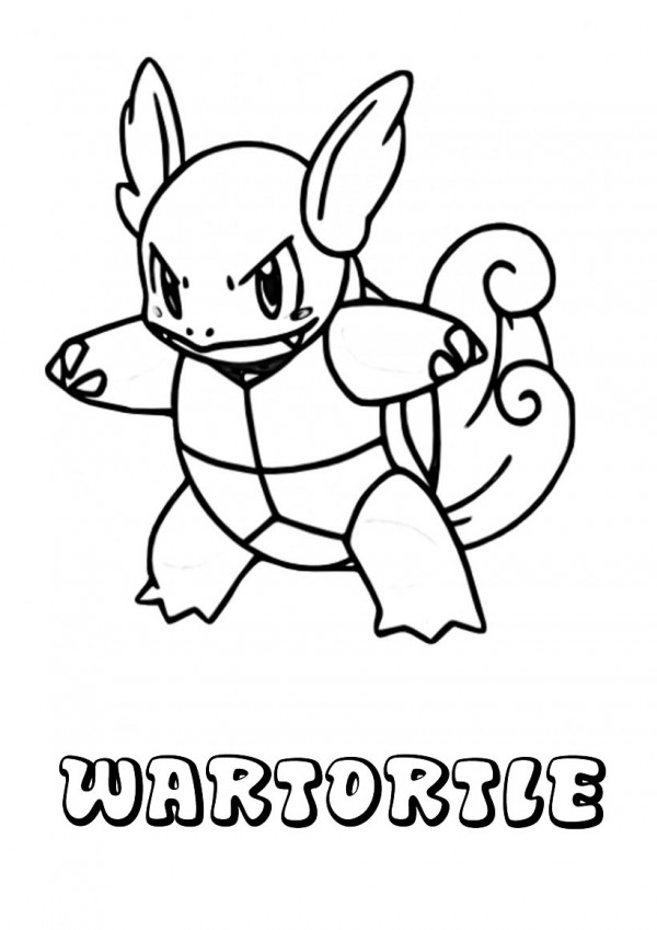 pokemon-wartortle-source_5iv