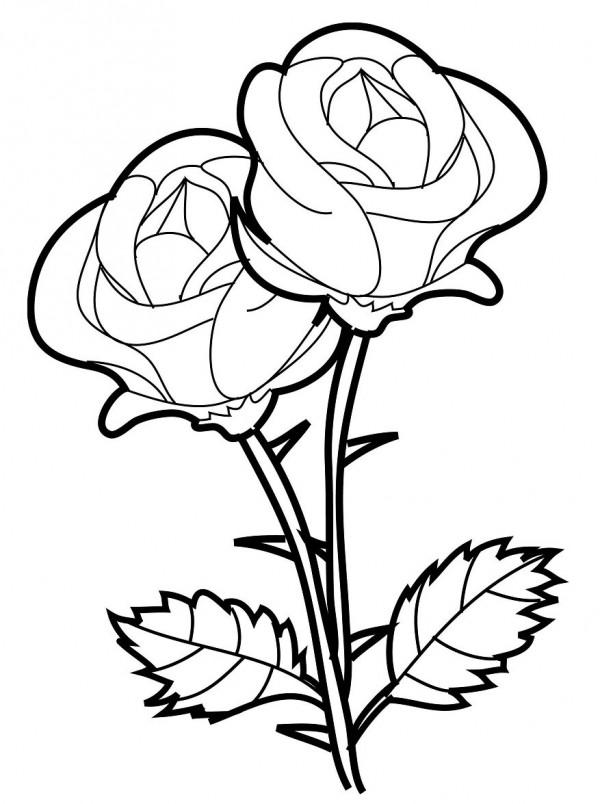 dibujos de flores hermosas para descargar imprimir y