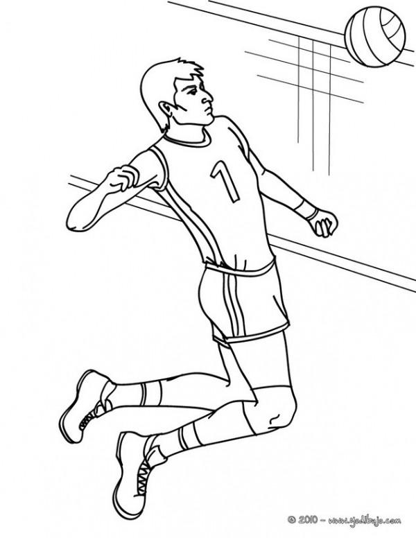 volleyball-3-01-avl_x7p