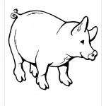 Imágenes de cerdos para colorear