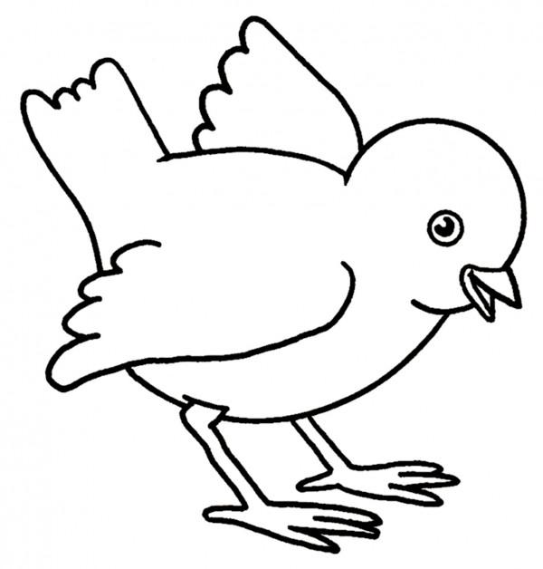 pollito-animado-para-colorear