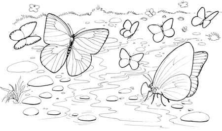 Dibujos para pintar de flores y mariposas de primavera | Colorear ...