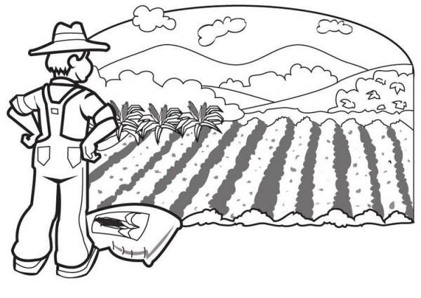 granjero.jpg5