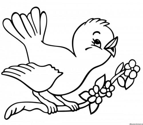 Dibujos De Pájaros Para Imprimir Y Pintar Colorear Imágenes