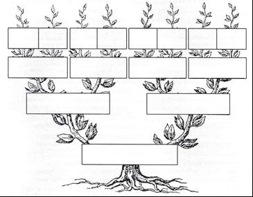 arbolgenealogico.jpg7