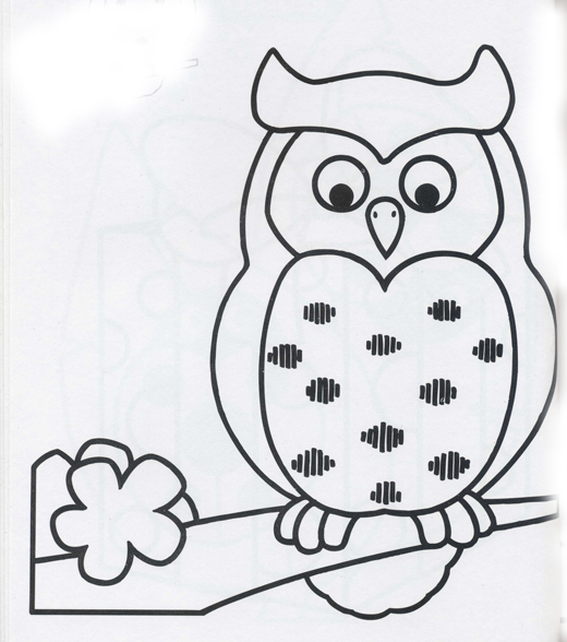 Dibujos De Búhos Y Lechuzas Atentas Para Pintar Colorear Imágenes