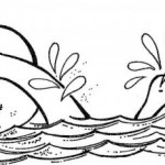 Dibujos de natación para imprimir y colorear
