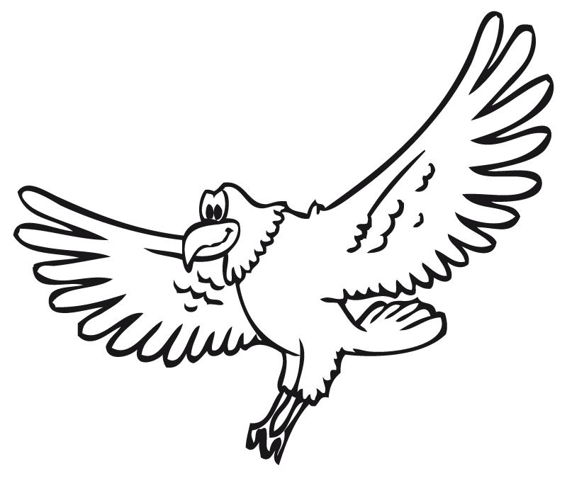 aves14 (1)