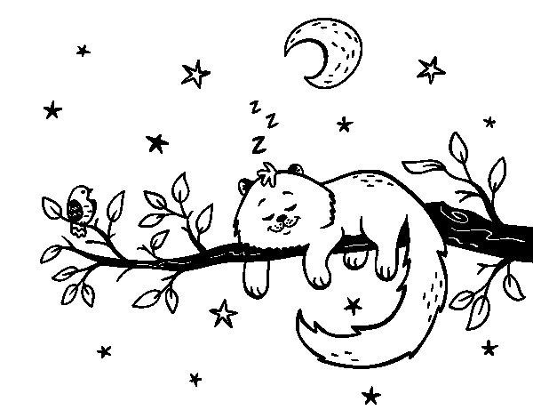 el-gato-y-la-luna-colorear