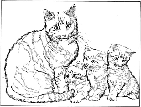 89 dibujos de gatos para imprimir y colorear colorear for Gatto da colorare per bambini