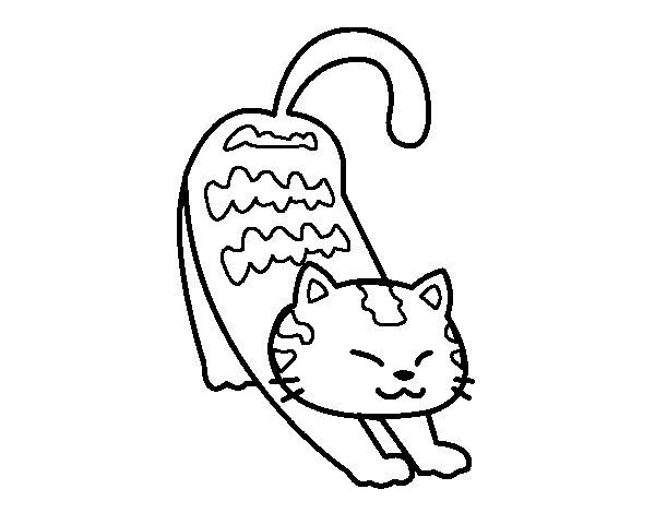 Dibujos Varios Para Colorear: 89 Dibujos De Gatos Para Imprimir Y Colorear