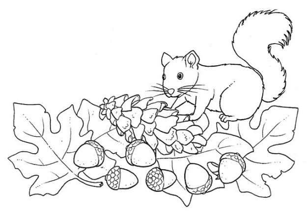 Dibujos Infantiles árbol En Otoño Para Colorear Dibujos De Otoño