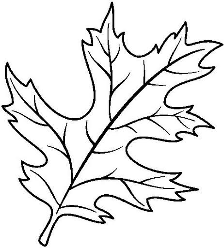 dibujos de oto o para colorear im genes colorear im genes On hojas de otono para pintar