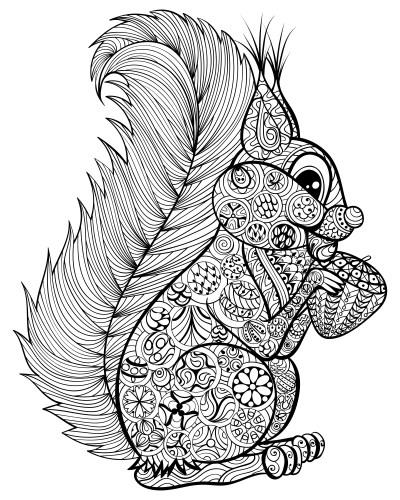 Dibujos de mandalas de animales y flores para colorear colorear im genes - Dibujos juveniles para imprimir ...