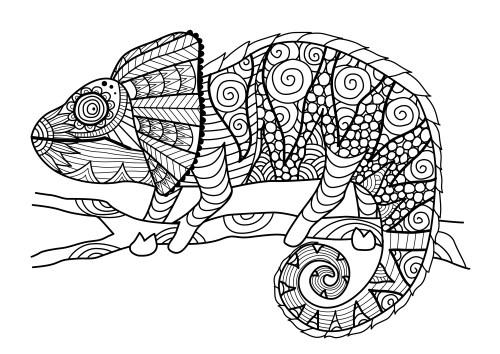 Dibujos de MANDALAS de ANIMALES Y FLORES para Colorear | Colorear