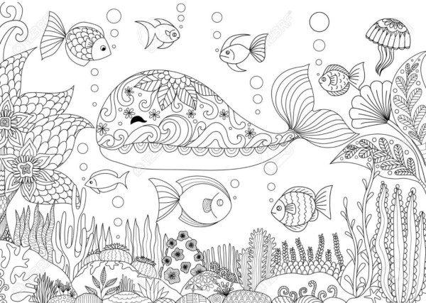 Dibujos Para Colorear Del Día De Los Océanos Colorear Imágenes