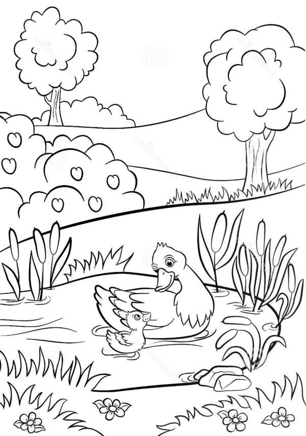 Dibujos Bonitos Y Fáciles Para Pintar Colorear Imágenes