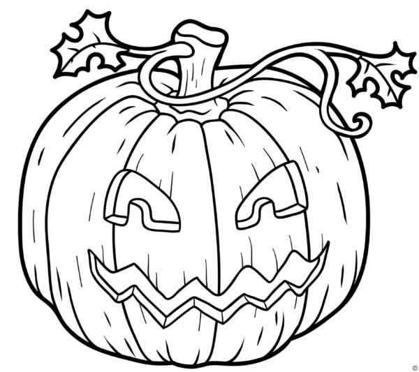 Dibujos de CALABAZAS de Halloween para colorear | Colorear imágenes