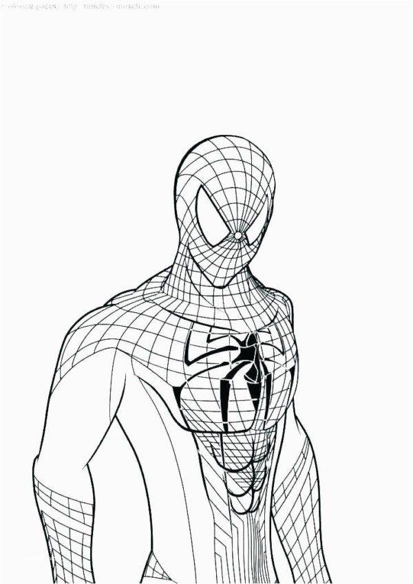 Dibujos Para Colorear De Spiderman Colorear Imágenes