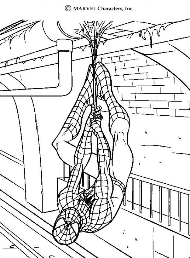 Dibujos para colorear de Spiderman | Colorear imágenes