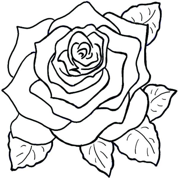 Las Más Bonitas Flores Para Colorear Colorear Imágenes