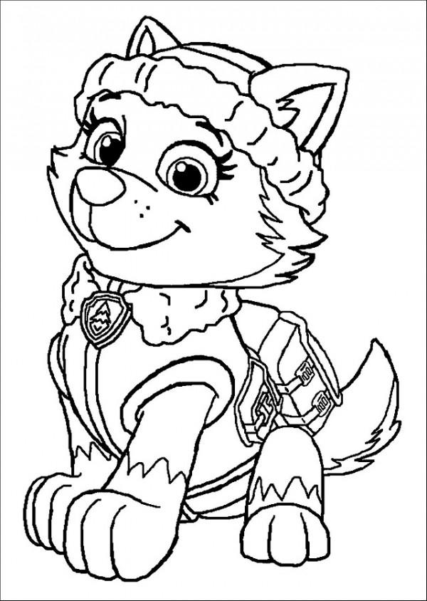 Dibujos de Paw Patrol (La Patrulla canina) para colorear ...