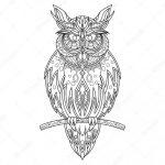 Dibujos de Búhos para colorear, descargar e imprimir