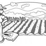 Dibujos de Agricultura para colorear, descargar e imprimir