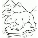 Dibujos de animales en peligro de extinción para colorear, descargar e imprimir